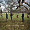【RECOMMEND ALBUM】トラディショナル・アイリッシュ・バンド, The Morning Tree による 2014 年リリースのセルフタイトルアルバム